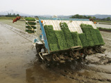 rice planting machines